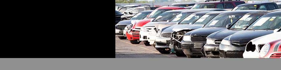 IAA-Insurance Auto Auctions